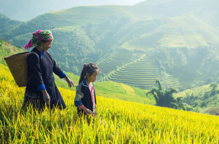 vietnam en famille - banner