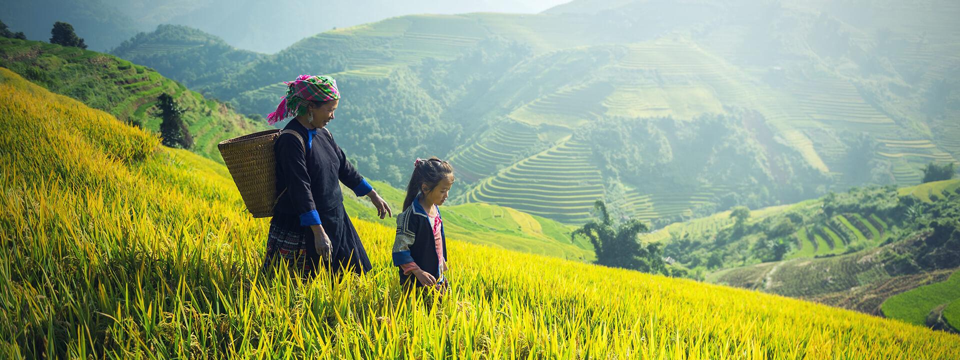 https://ttb-travel.com/wp-content/uploads/2017/12/vietnam-en-famille-banner.jpg