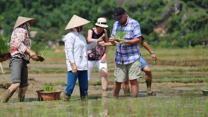 Voyage en immersion au Vietnam